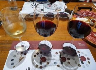 Vinhos & Viagens: Valorizar as características da uva é o conceito de produção da vinícola Fardo