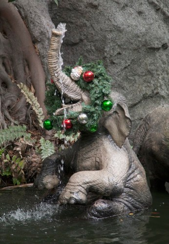 JINGLE CRUISE (ANAHEIM, Calif.) – (c)Disney