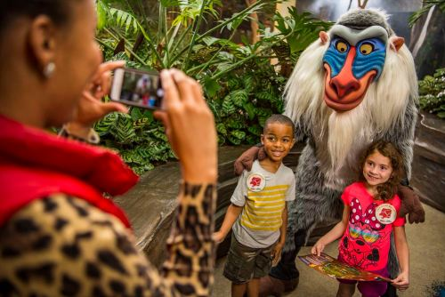 "Young explorers have the chance to participate in a new quest to become honorary members of the Lion Guard with the new Lion Guard Adventure at Disney's Animal Kingdom. The adventure, inspired by Disney Junior's animated series ""The Lion Guard,"" sends guests on an exciting search for the five Lion Guard character statues hidden in themed locations throughout the park. Youngsters learn about animals and the Circle of Life as they follow the Lion Guard Adventure Map. The expedition concludes at Rafiki's Planet Watch with a photo opportunity with Rafiki, as well as a Lion Guard button, special pledge, and fun activities. The Lion Guard Adventure is included in Disney's Animal Kingdom admission. Disney's Animal Kingdom is located at Walt Disney World Resort in Lake Buena Vista, Fla. (David Roark and Matt Stroshane, photographers)"