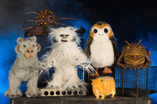 Guests visiting the Creature Stall in Star Wars: Galaxy's Edge at Disneyland Park in Anaheim, California, and at Disney's Hollywood Studios in Lake Buena Vista, Florida, will discover creatures of the galaxy ready for a home, including porgs, tauntauns and more. (David Roark/Disney Parks)