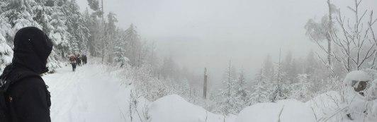 dpsg-sinsheim-rohrbach-2014-winterwanderung-008