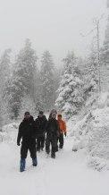 dpsg-sinsheim-rohrbach-2014-winterwanderung-016