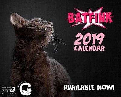 Batfink 2019 Calendar