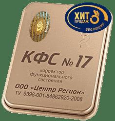КФС №17 (возрождение) КФС №17
