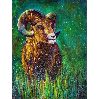 Kimberly Adams  -- Ram