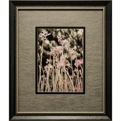 Jean Burnett -- Ice Flowers