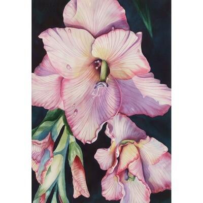 Sandi McGuire -- Gladiola