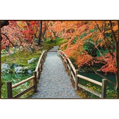 Rob Tilley -- Sento Imperial Palace Garden I