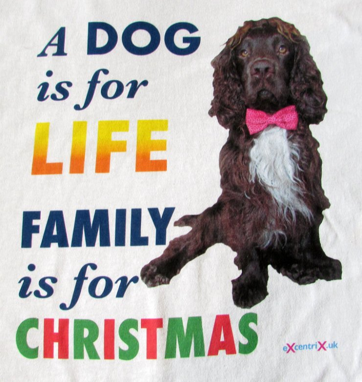 A Dog is for LIFE. Family is for CHRISTMAS T-shirt XTS00014