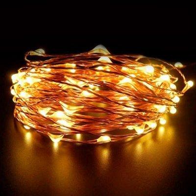 Solar Powered Fairy String Lights (5 ft)
