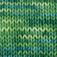 Paca-Paints Alpaca Yarn - Emerald Isle