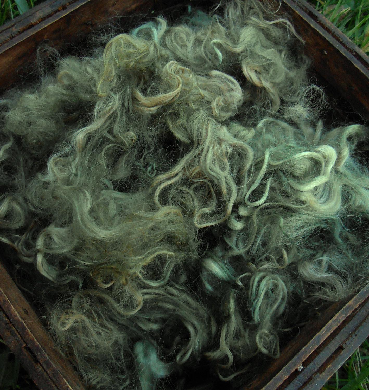 Hand-Dyed Suri Alpaca Fiber, 5 Inches, Olive