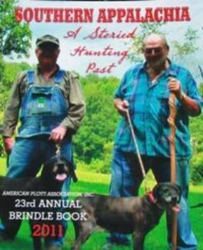 2011 APA Brindle Book