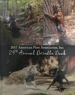 2017 APA Brindle Book