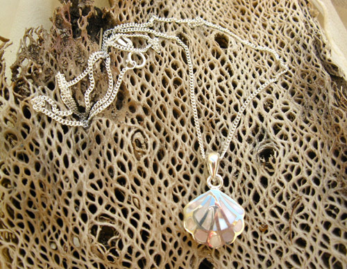Scallop shell comes with sterling silver curb chain
