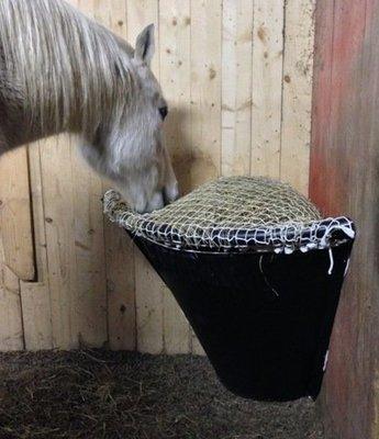 Pony Corner Net B