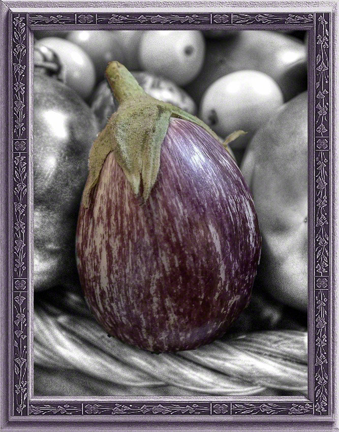 Eggplant in Black & White & Purple VP2018112404