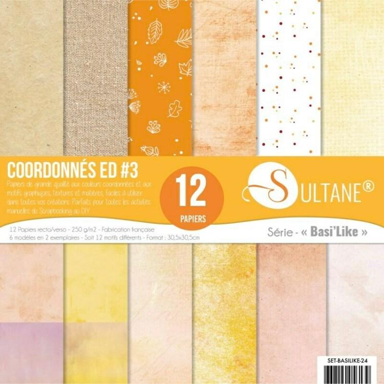 Set de 12 papiers Sultane recto/verso 30,5x30,5 cm - 250 g/m2 - Coordonnés comme la nature est belle