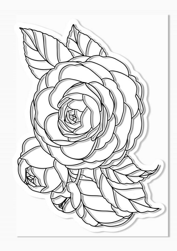 Tampon clear roses géantes - 10x15cm