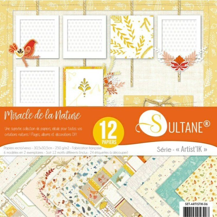 Set de 12 papiers Sultane recto/verso 30,5x30,5 cm - 250 g/m2 - Collection comme la nature est belle