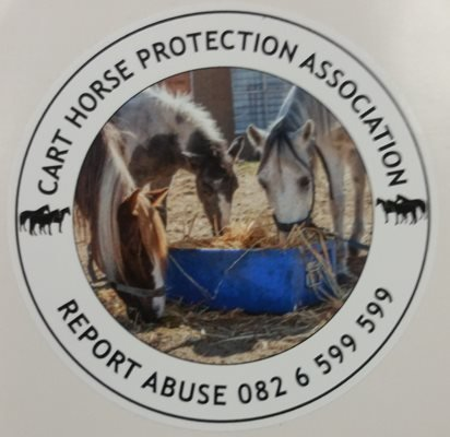 Licence Disc Stickers