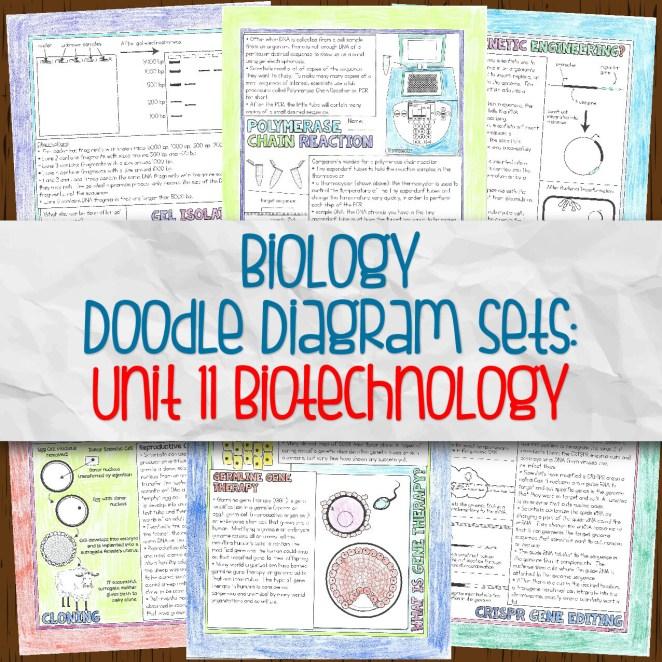 Biology Unit 11 Doodle Diagram Sets for Biotechnology
