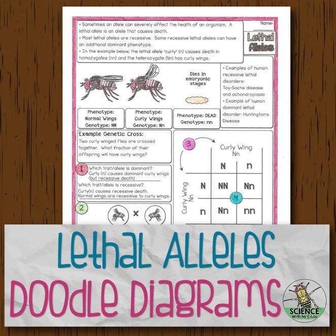 Lethal Alleles Doodle Diagrams