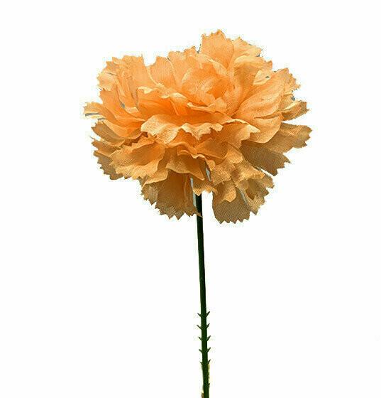 S3000PEACH - Carnation Pick $16.95 ( Box 100)