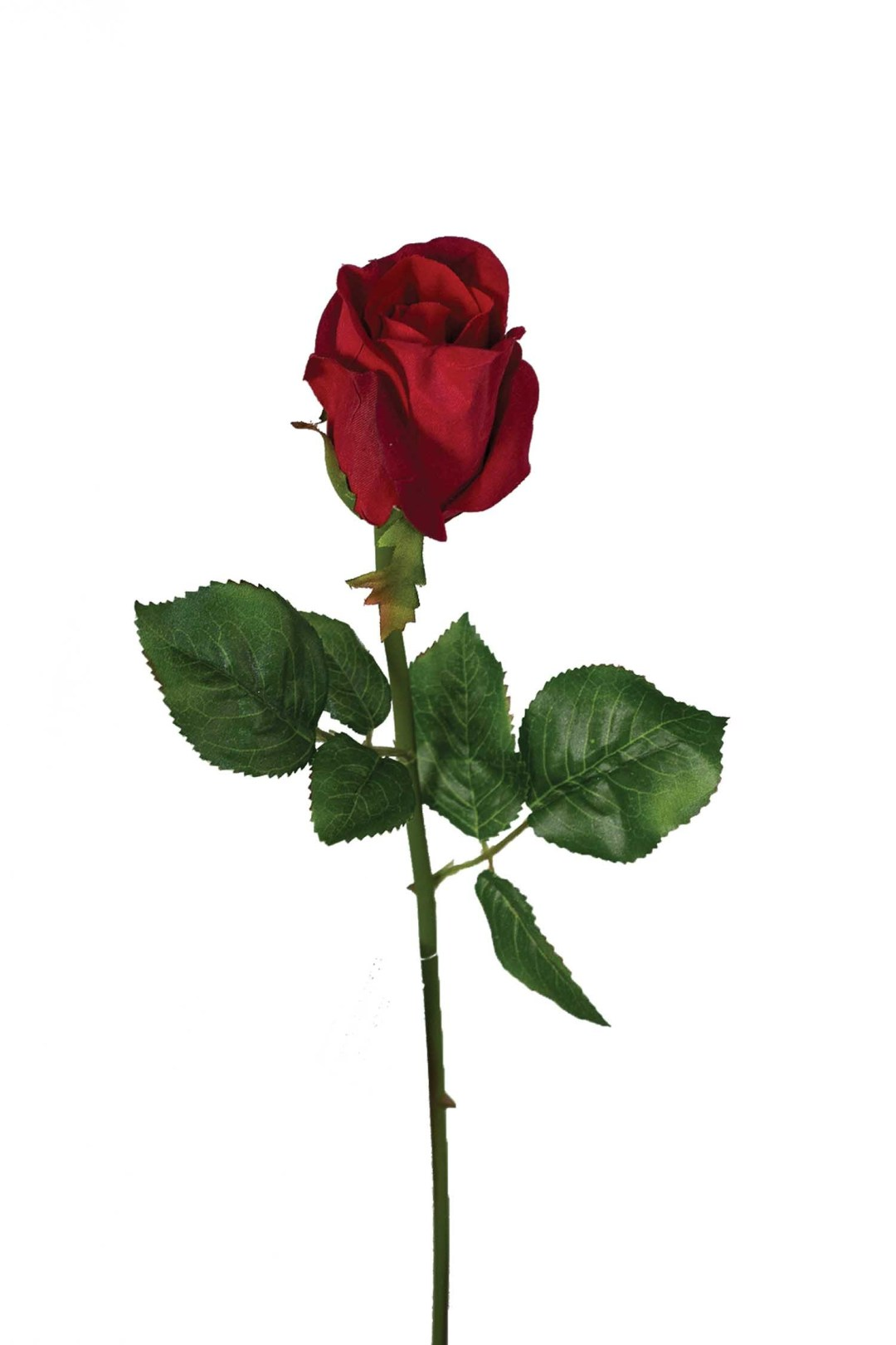 """SS2018RED - 19"""" Natural Red Rose Bud $18.50 a Dozen SS2018RED"""