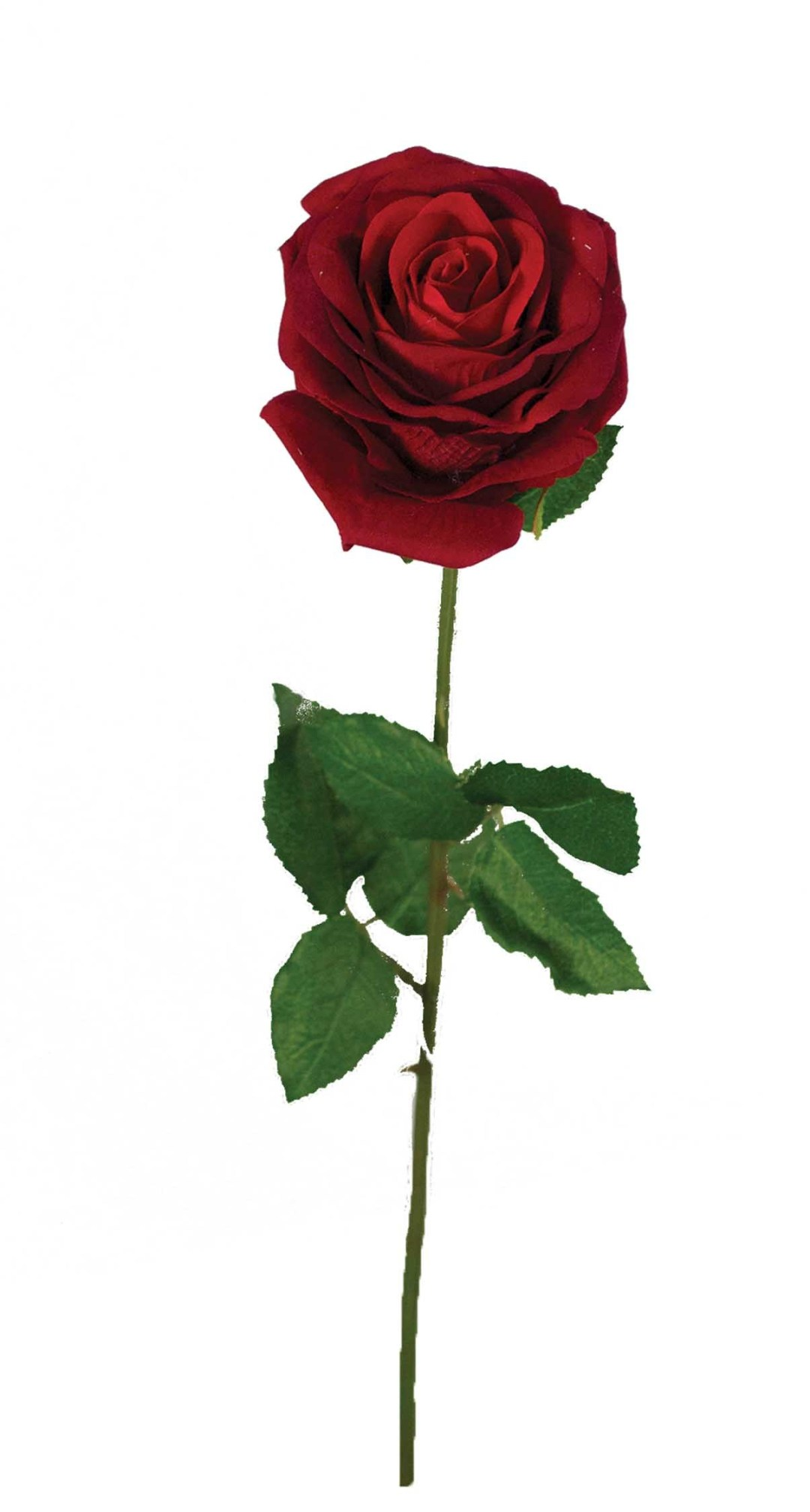 """SS2019RED - 19"""" Natural Red Open Rose Stem $25 per dozen SS2019RED"""