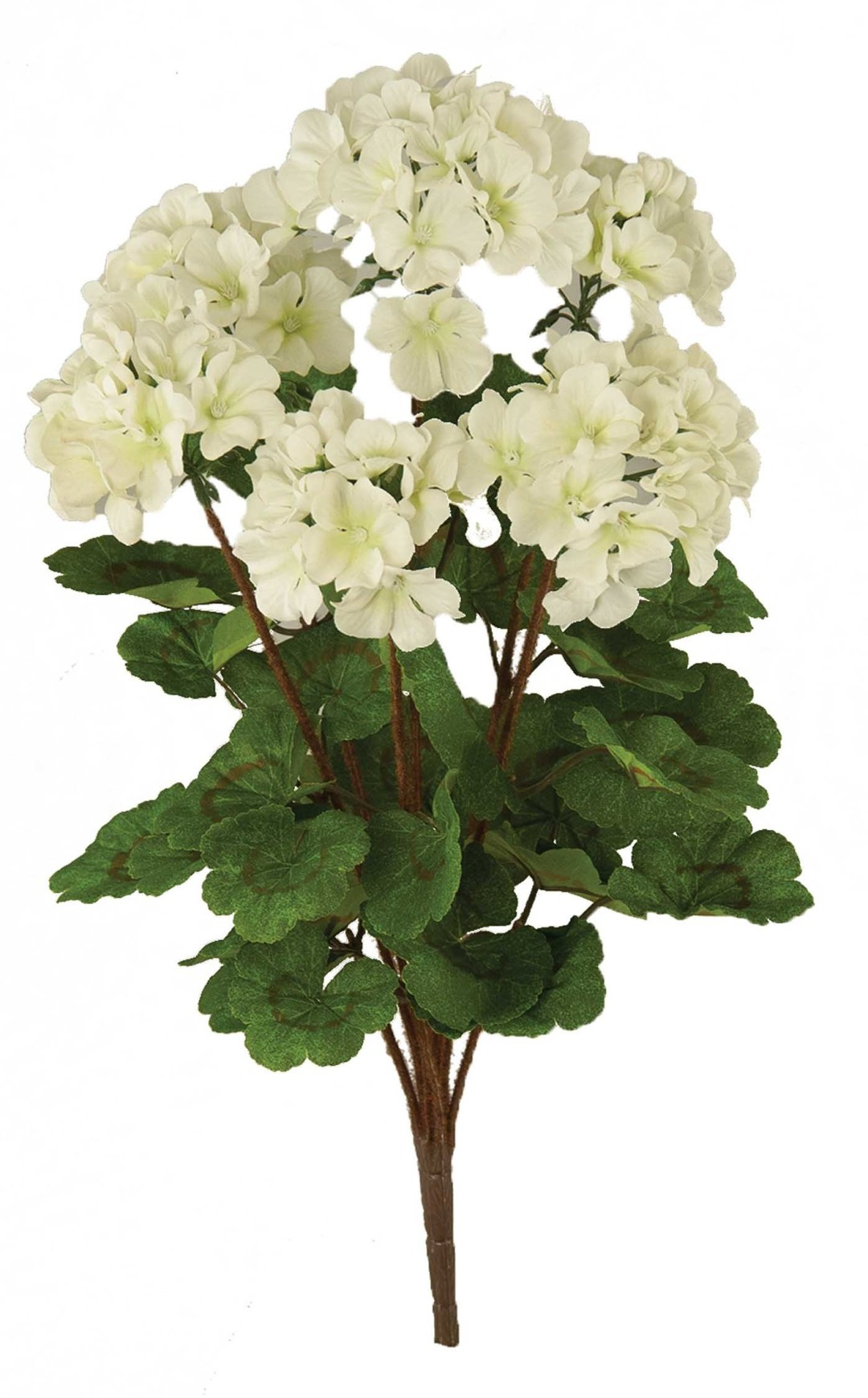 "SB2038WT - 20"" White Geranium Bush x6 $6.45 each SB2038WT"