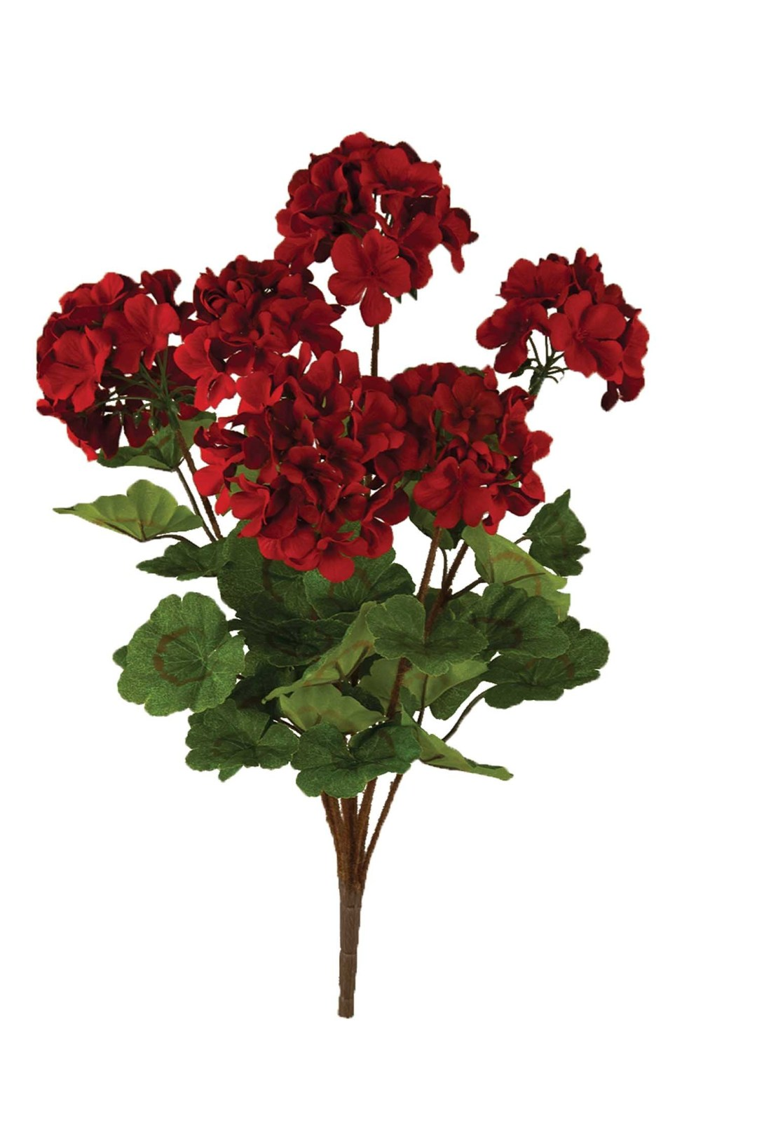 "SB2038RD - 20"" Red Geranium Bush x6 $6.45 each SB2038RD"