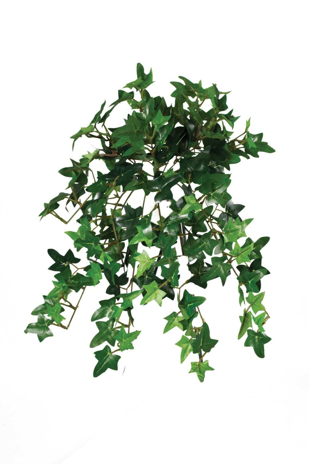 """SBG6107-GN - 13"""" Mini Green Hanging Ivy $4.75 each SBG6107-GN"""