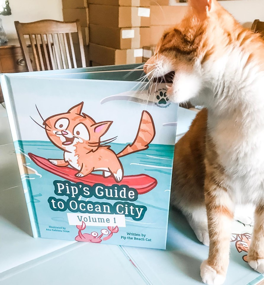 Pip's Guide to Ocean City Vol. I 81Y079C2AFYT4