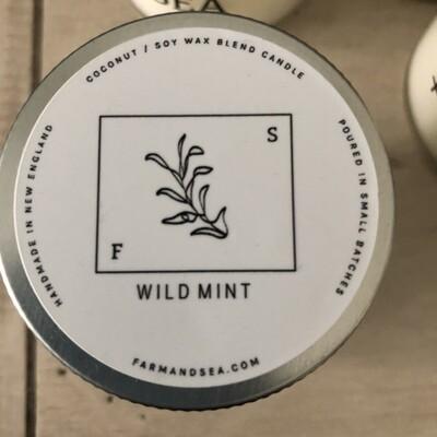 Wild Mint Candle - 3.5 oz.