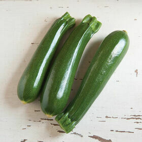 Zucchini Vegetable Plant