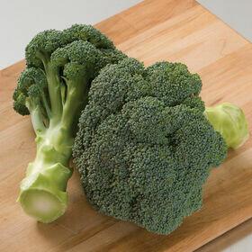 Broccoli Vegetable Plant