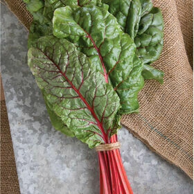 Swiss Chard Vegetable Plant