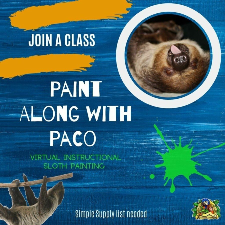 Paint Along with Paco  - Private Party