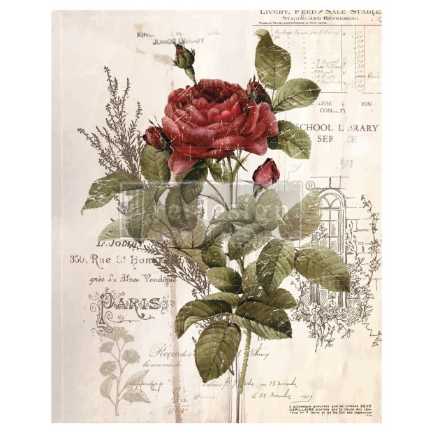Prima Decor Transfer: Botanical Rose (NEW!) Botanical Rose