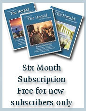 Six Months Subscription