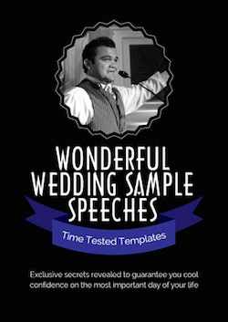 eBook PDF public speaking WONDERFUL WEDDING SAMPLE SPEECHES eBook pdf speaking wedding
