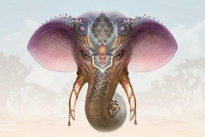Royal White Elephant- Limited Edition Canvas Prints