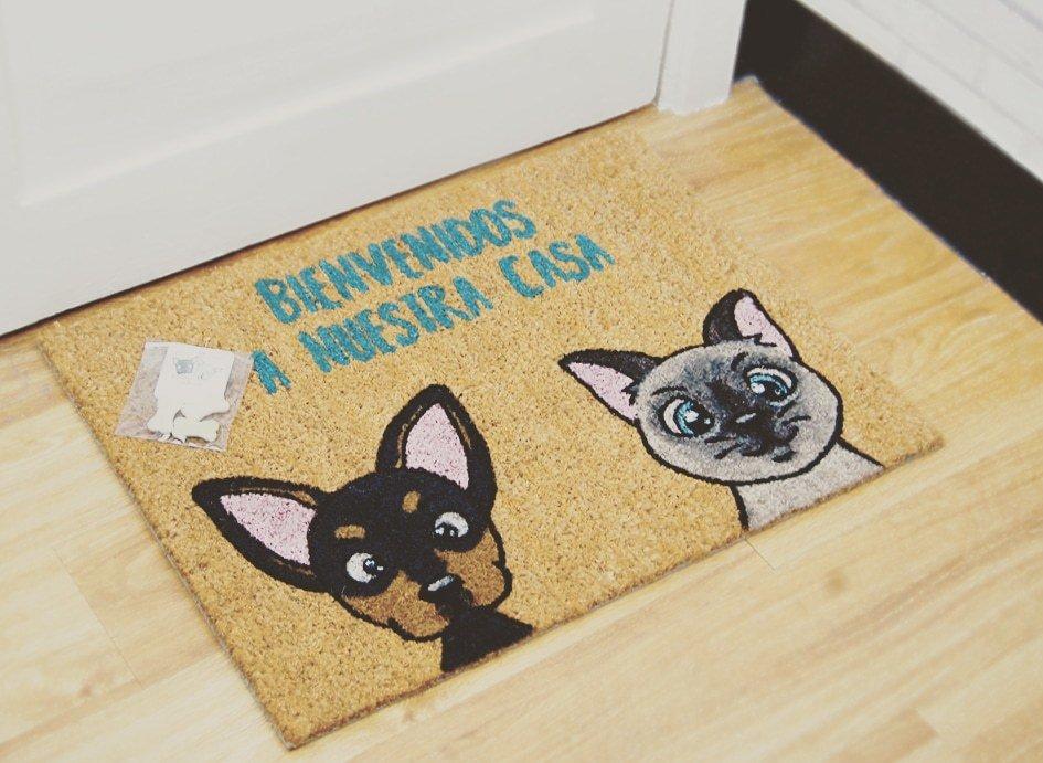 Pinscher y gato siamés