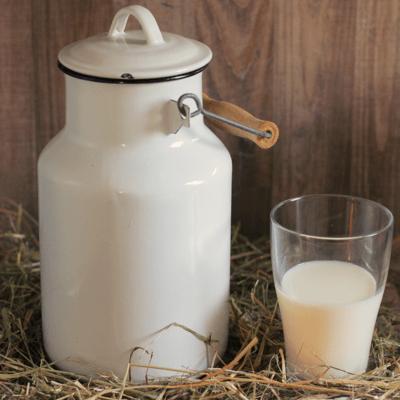 3 kg Protéine Lait Native Bio NATURE (origine du lait: France)