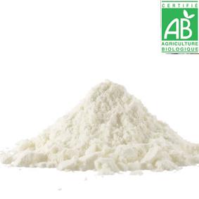 PRO: inuline d'agave bio (PAR SAC DE 20 KG)