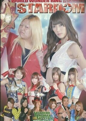 Stardom Official Guide Book #54 from December 2014