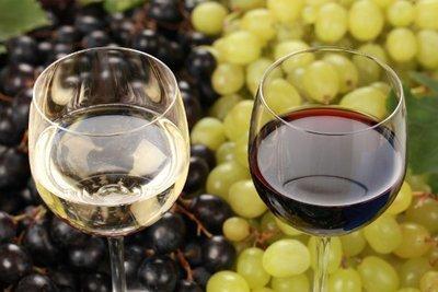 Certificate in Oenology & Wine Business