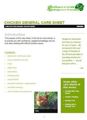 Chicken general care sheet - HH00002