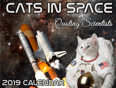 2019 Cats in Space Quoting Scientists Wall Calendar